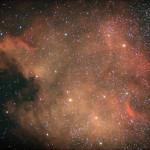 Nordamerika-Nebel NGC 7000 (Ralf Biegel)