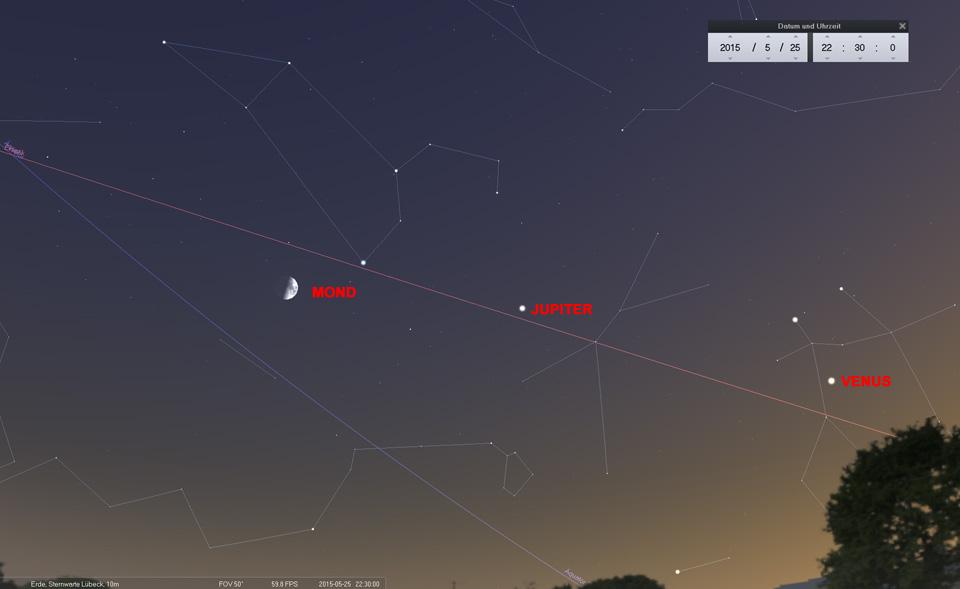 """Tag: Am letzten Tag des """"Moonwalk"""" steht der Halbmond südöstlich des Regulus im Sternbild Löwe"""
