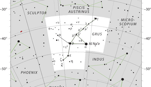 Das Sternbild Grus – Kranich